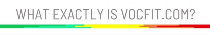 What exactly is vocfit.com?
